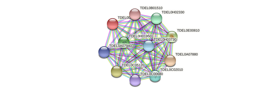 XP_003681360.1 protein (Torulaspora delbrueckii) - STRING interaction network