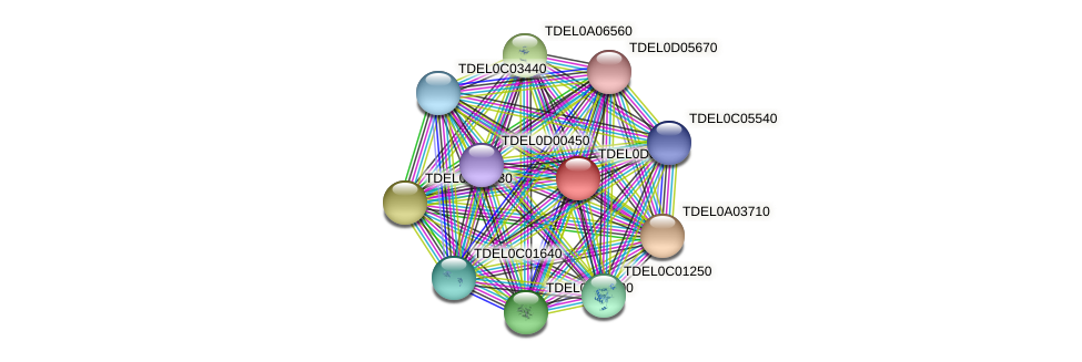 XP_003681437.1 protein (Torulaspora delbrueckii) - STRING interaction network