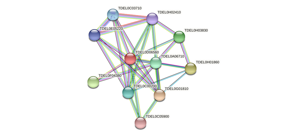 XP_003681451.1 protein (Torulaspora delbrueckii) - STRING interaction network