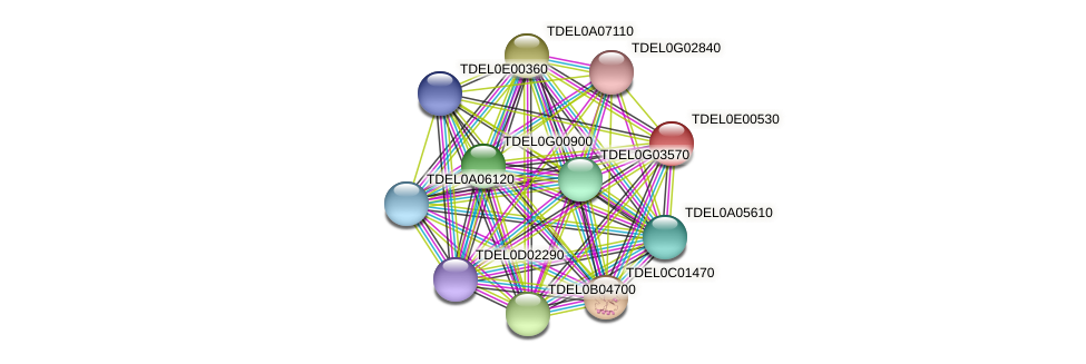 XP_003681507.1 protein (Torulaspora delbrueckii) - STRING interaction network