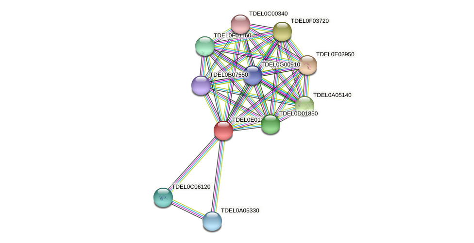 XP_003681565.1 protein (Torulaspora delbrueckii) - STRING interaction network