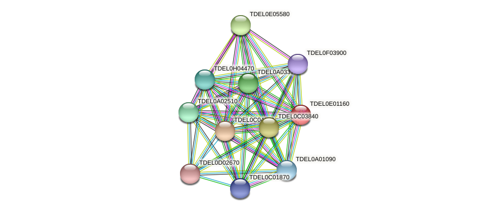XP_003681570.1 protein (Torulaspora delbrueckii) - STRING interaction network