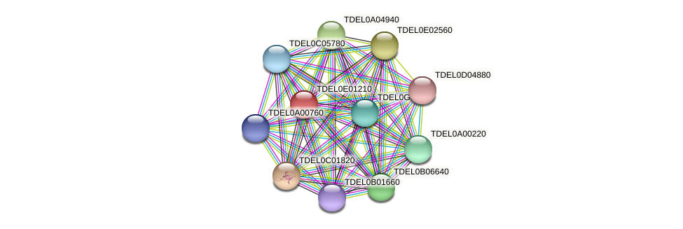 XP_003681575.1 protein (Torulaspora delbrueckii) - STRING interaction network