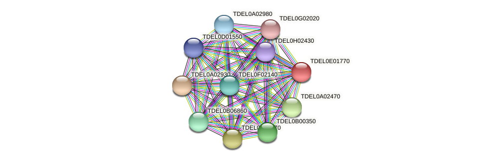 XP_003681631.1 protein (Torulaspora delbrueckii) - STRING interaction network