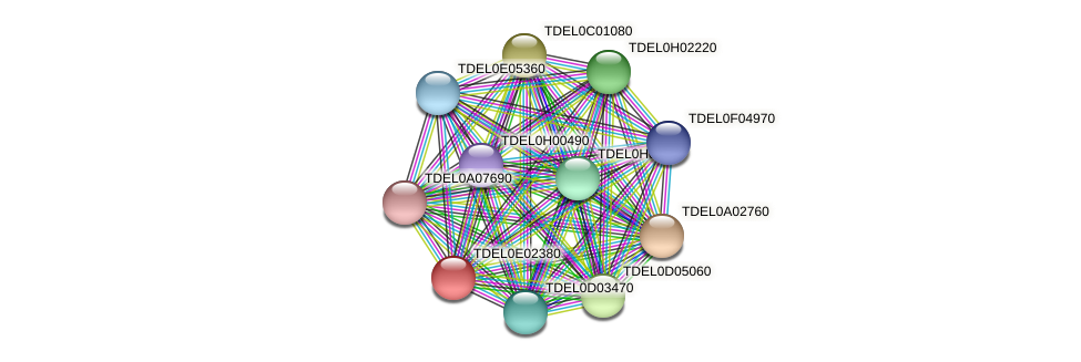 XP_003681692.1 protein (Torulaspora delbrueckii) - STRING interaction network