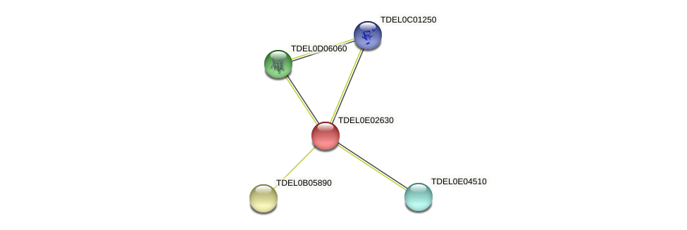 XP_003681717.1 protein (Torulaspora delbrueckii) - STRING interaction network