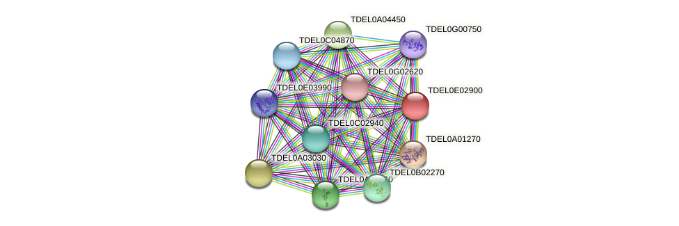 XP_003681744.1 protein (Torulaspora delbrueckii) - STRING interaction network