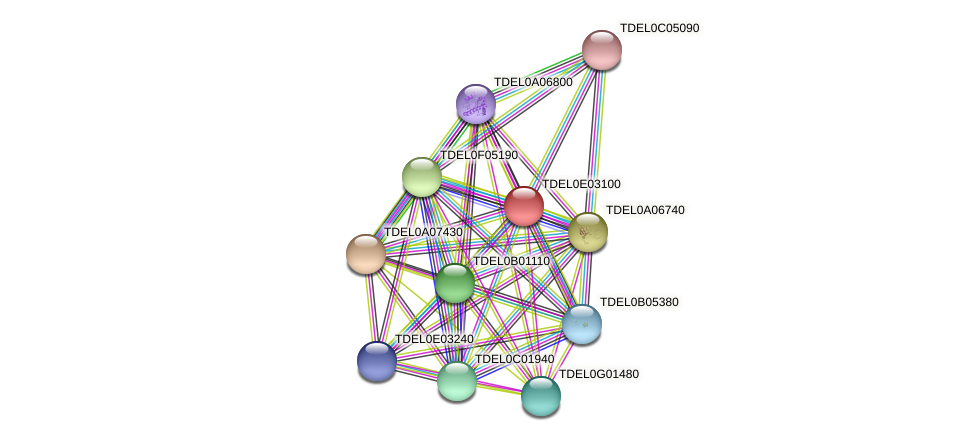 XP_003681764.1 protein (Torulaspora delbrueckii) - STRING interaction network