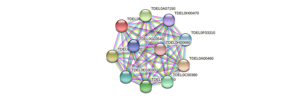 XP_003681783.1 protein (Torulaspora delbrueckii) - STRING interaction network