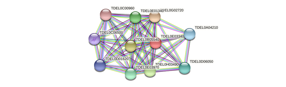 XP_003681788.1 protein (Torulaspora delbrueckii) - STRING interaction network