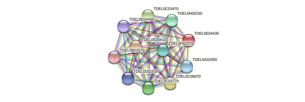 XP_003681897.1 protein (Torulaspora delbrueckii) - STRING interaction network