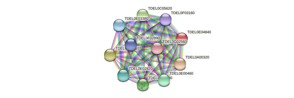 XP_003681938.1 protein (Torulaspora delbrueckii) - STRING interaction network
