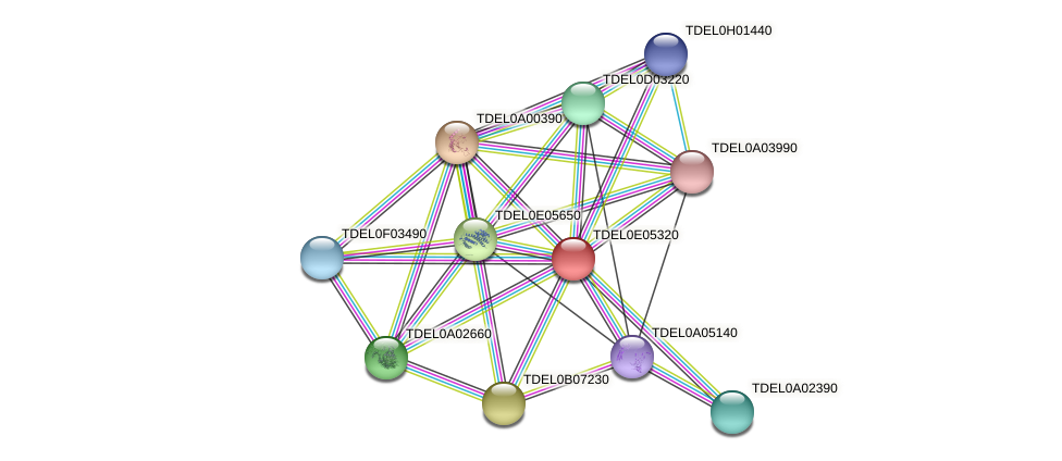 XP_003681986.1 protein (Torulaspora delbrueckii) - STRING interaction network