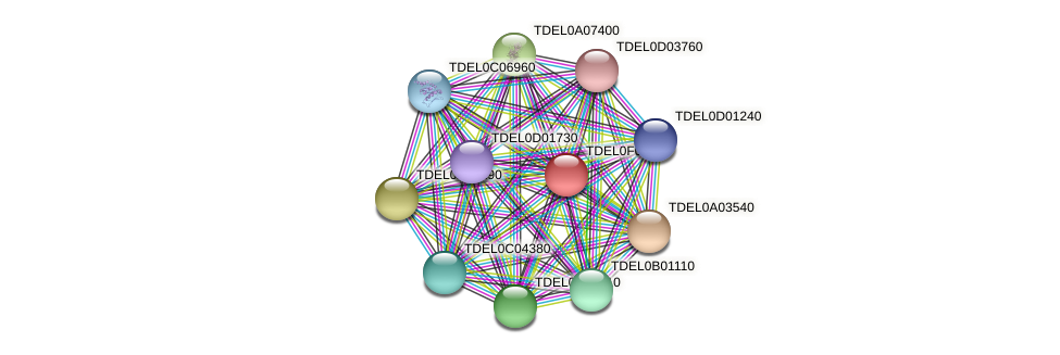 XP_003682117.1 protein (Torulaspora delbrueckii) - STRING interaction network