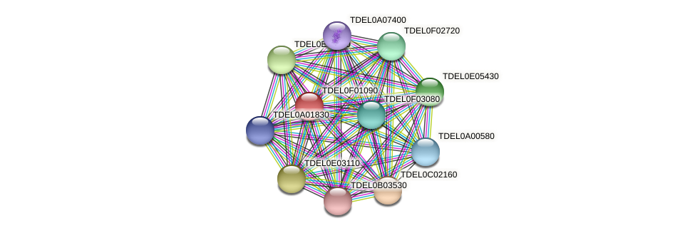XP_003682131.1 protein (Torulaspora delbrueckii) - STRING interaction network