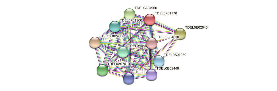 XP_003682199.1 protein (Torulaspora delbrueckii) - STRING interaction network