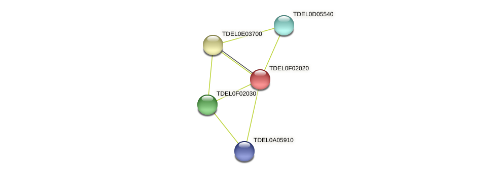 XP_003682224.1 protein (Torulaspora delbrueckii) - STRING interaction network