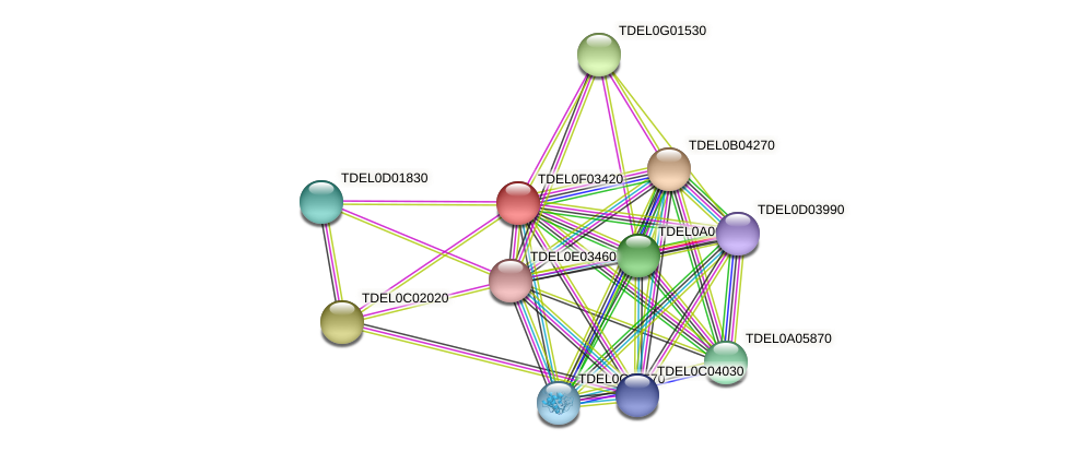 XP_003682364.1 protein (Torulaspora delbrueckii) - STRING interaction network