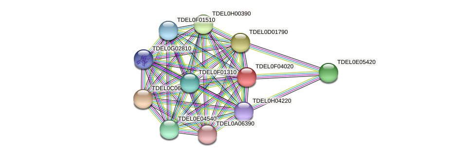 XP_003682424.1 protein (Torulaspora delbrueckii) - STRING interaction network