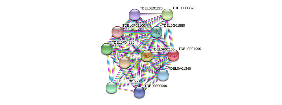 XP_003682521.1 protein (Torulaspora delbrueckii) - STRING interaction network