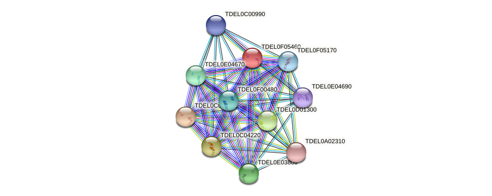 XP_003682568.1 protein (Torulaspora delbrueckii) - STRING interaction network