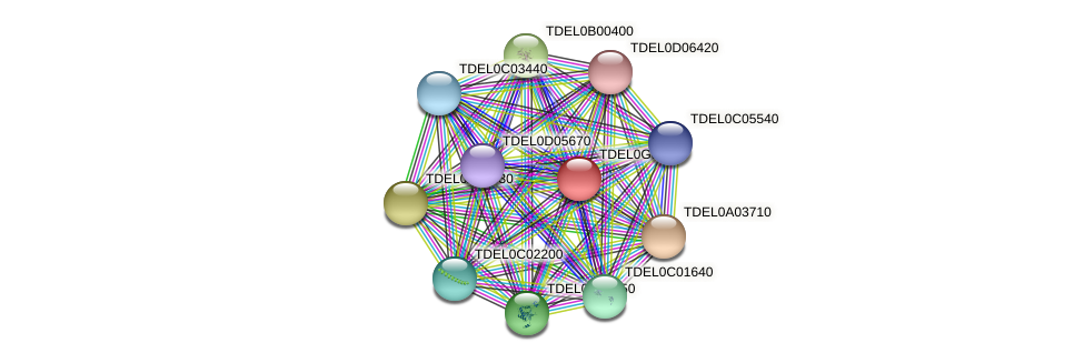 XP_003682666.1 protein (Torulaspora delbrueckii) - STRING interaction network