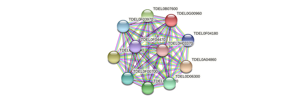 XP_003682674.1 protein (Torulaspora delbrueckii) - STRING interaction network