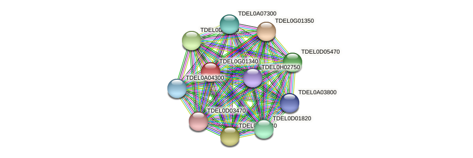 XP_003682712.1 protein (Torulaspora delbrueckii) - STRING interaction network