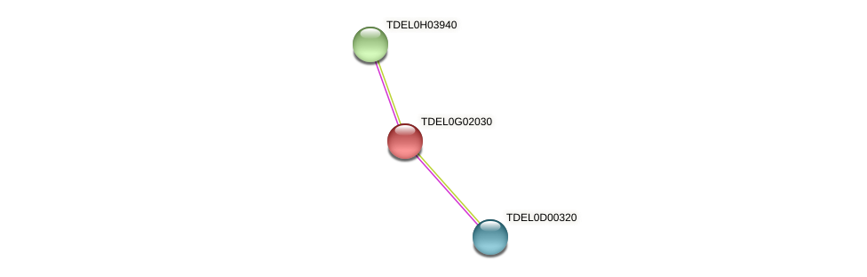 XP_003682781.1 protein (Torulaspora delbrueckii) - STRING interaction network
