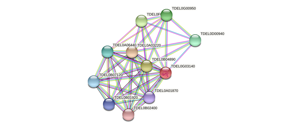 XP_003682892.1 protein (Torulaspora delbrueckii) - STRING interaction network