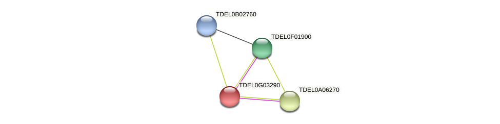 XP_003682907.1 protein (Torulaspora delbrueckii) - STRING interaction network