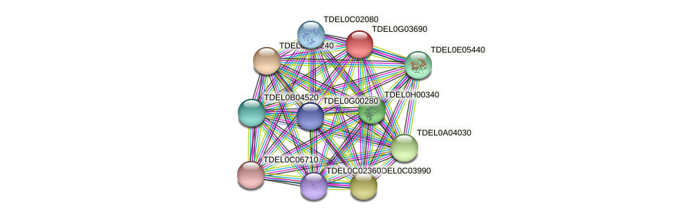 XP_003682947.1 protein (Torulaspora delbrueckii) - STRING interaction network