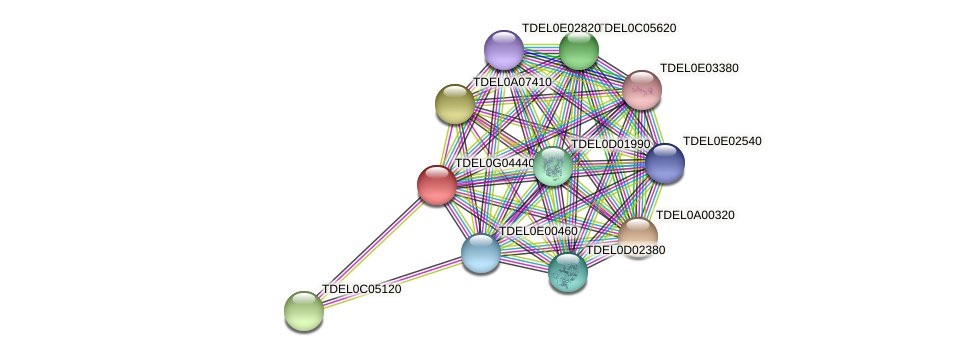 XP_003683022.1 protein (Torulaspora delbrueckii) - STRING interaction network