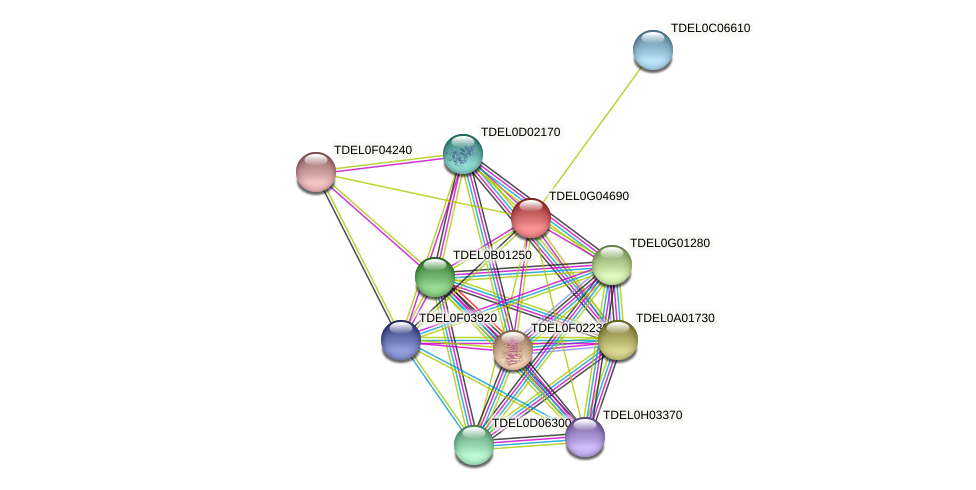 XP_003683047.1 protein (Torulaspora delbrueckii) - STRING interaction network