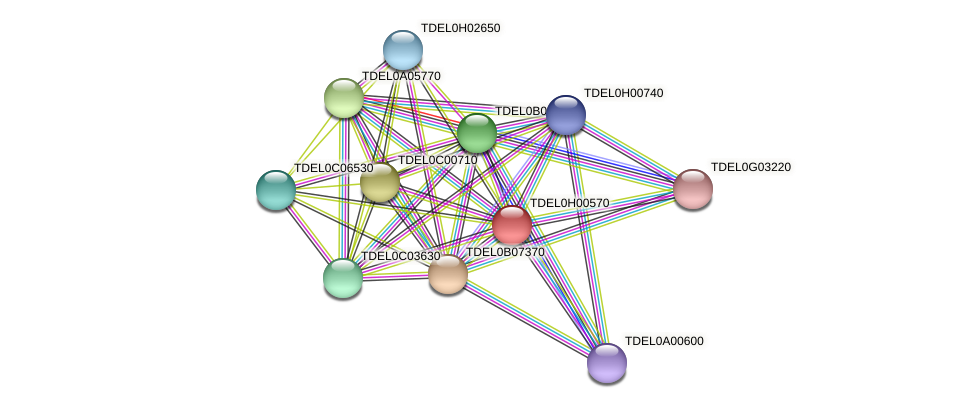 XP_003683127.1 protein (Torulaspora delbrueckii) - STRING interaction network