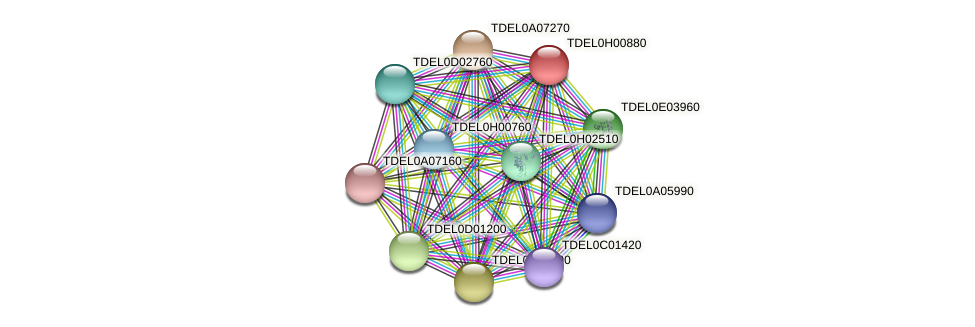 XP_003683158.1 protein (Torulaspora delbrueckii) - STRING interaction network