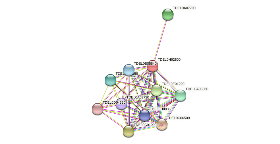 XP_003683320.1 protein (Torulaspora delbrueckii) - STRING interaction network