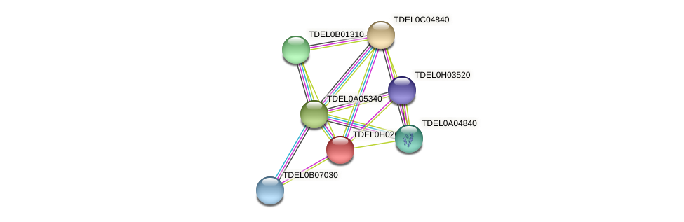 XP_003683334.1 protein (Torulaspora delbrueckii) - STRING interaction network