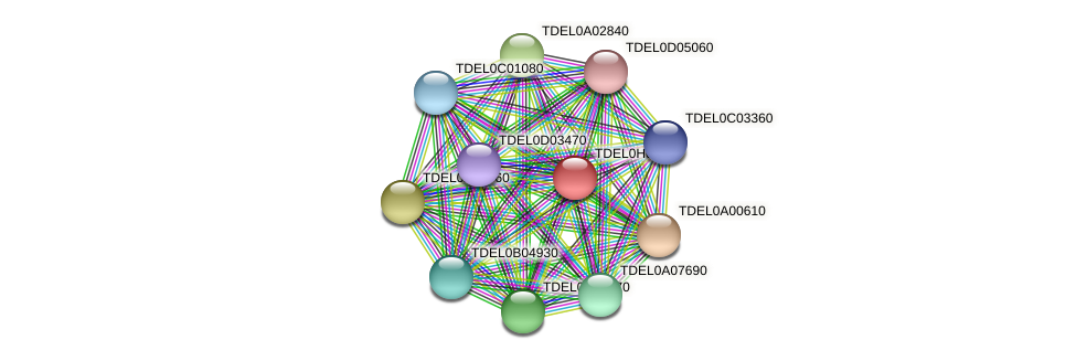 XP_003683345.1 protein (Torulaspora delbrueckii) - STRING interaction network
