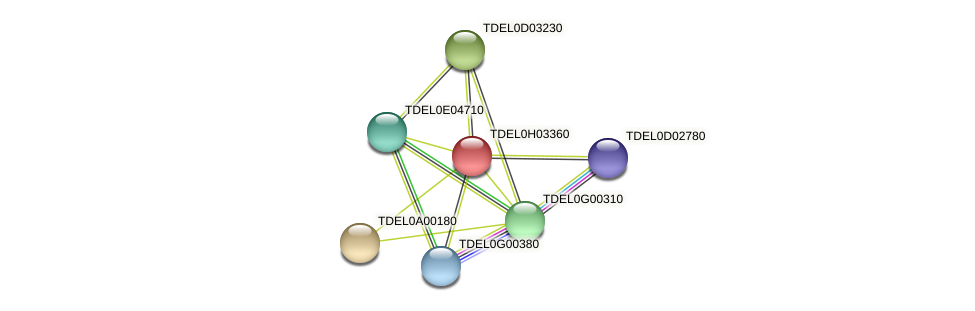 XP_003683406.1 protein (Torulaspora delbrueckii) - STRING interaction network