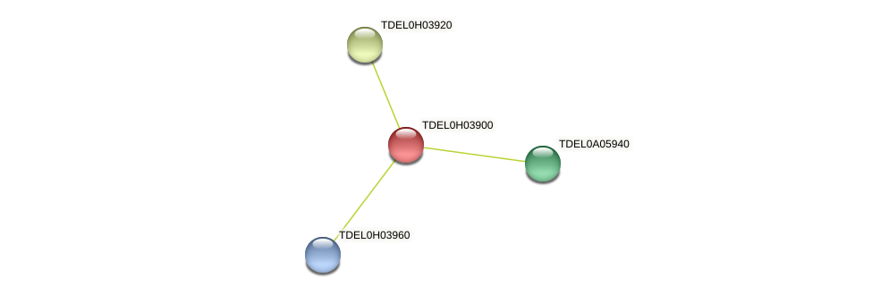 XP_003683460.1 protein (Torulaspora delbrueckii) - STRING interaction network