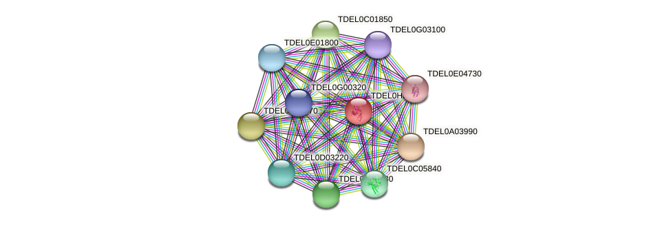 PRT1 protein (Torulaspora delbrueckii) - STRING interaction network