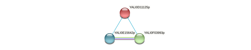 XP_002143053.1 protein (Yarrowia lipolytica) - STRING interaction network