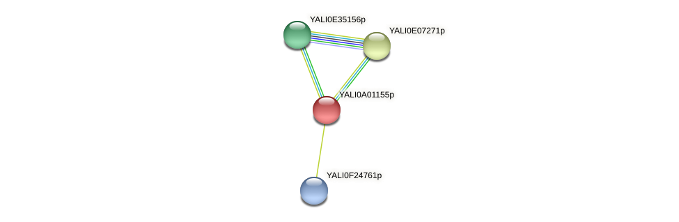 XP_499645.1 protein (Yarrowia lipolytica) - STRING interaction network