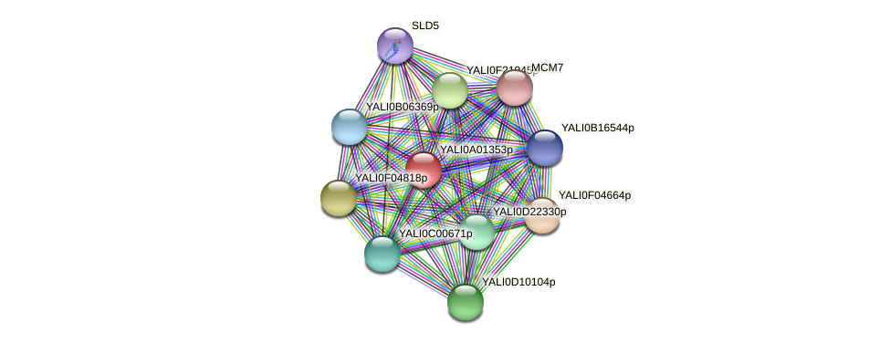XP_499648.1 protein (Yarrowia lipolytica) - STRING interaction network