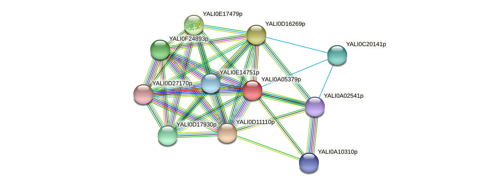 XP_499784.1 protein (Yarrowia lipolytica) - STRING interaction network