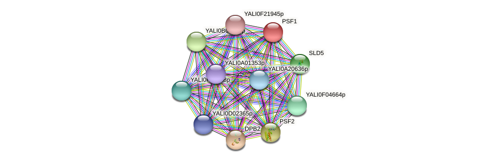 PSF1 protein (Yarrowia lipolytica) - STRING interaction network