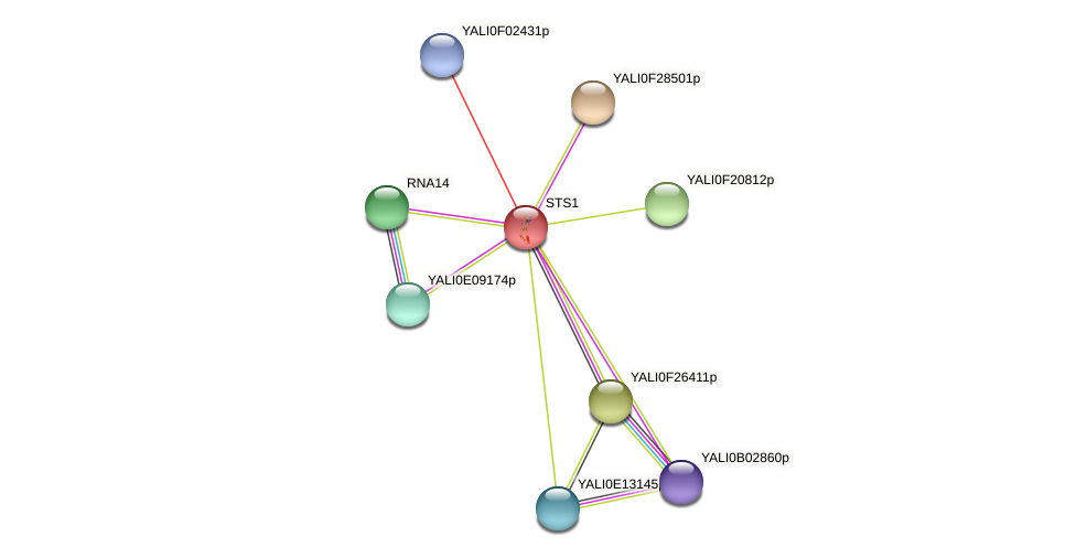 STS1 protein (Yarrowia lipolytica) - STRING interaction network