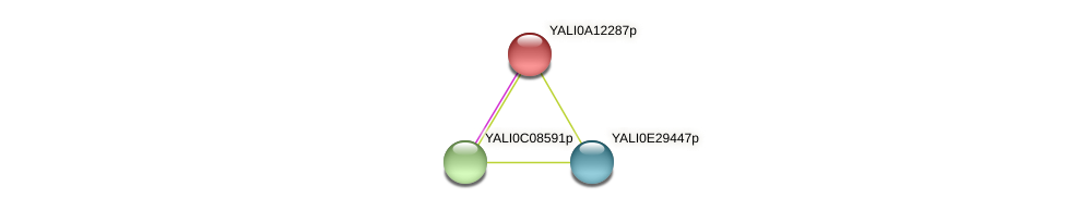 XP_500011.1 protein (Yarrowia lipolytica) - STRING interaction network