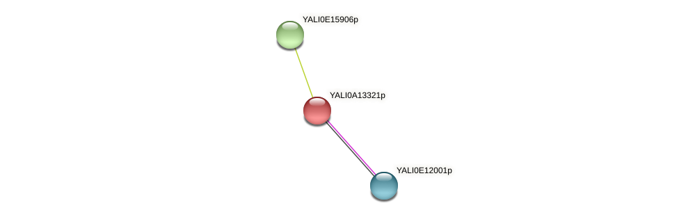 XP_500036.1 protein (Yarrowia lipolytica) - STRING interaction network